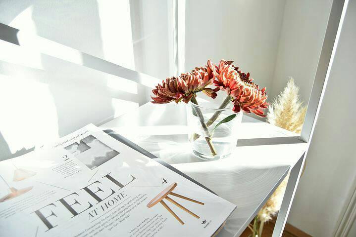 como se organizar para morar sozinha